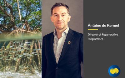 Meet Antoine de Kermel, Director of Regenerative Programmes